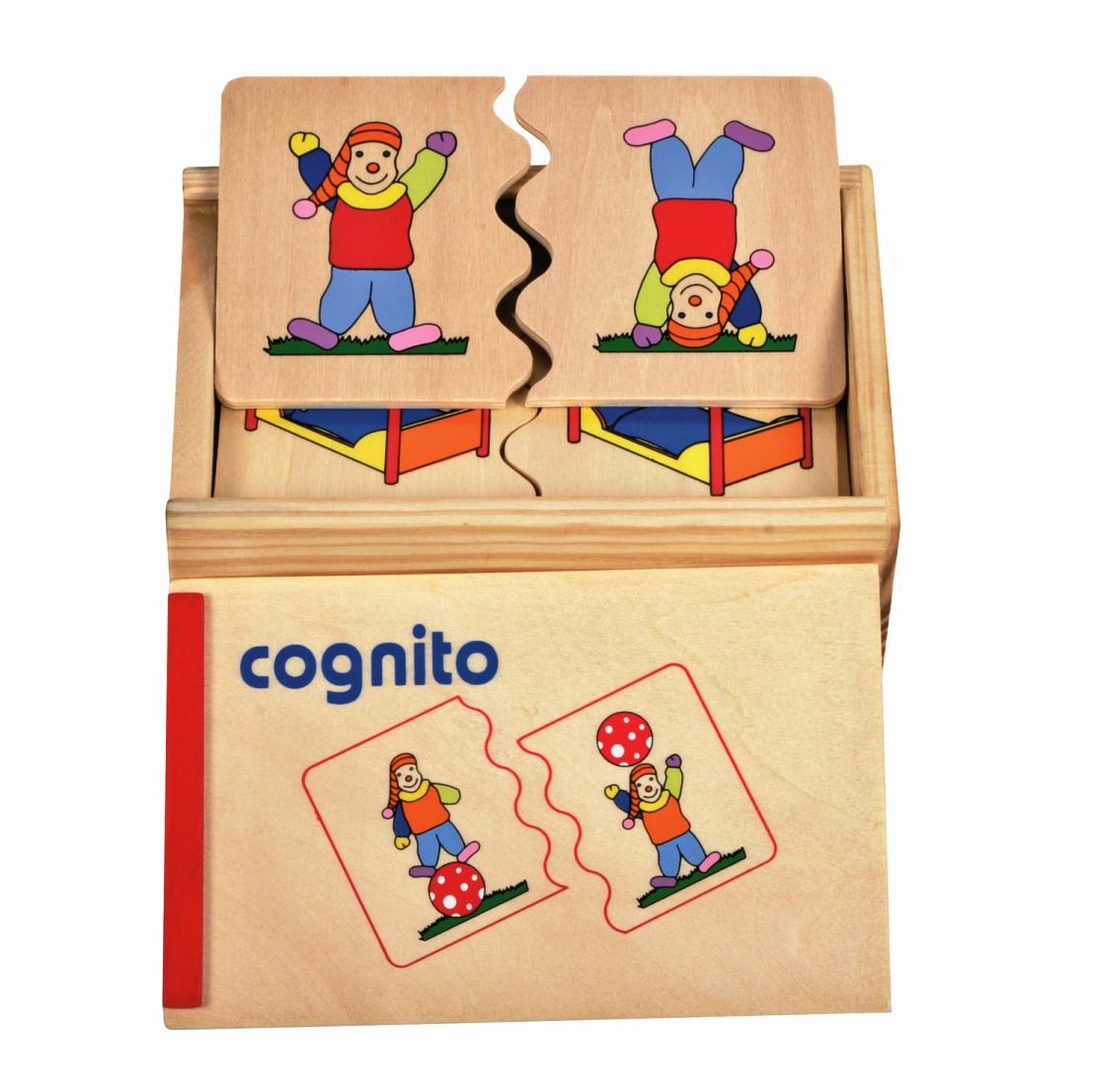 HT 17143 Cognito Houdingen